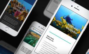 A Horizonte Aberto Catamarãs opera passeios a Abrolhos, e contou com A.Companhia para o desenvolvimento de sua comunicação.